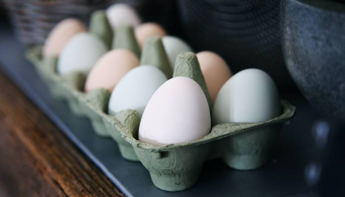 how many calories in one egg